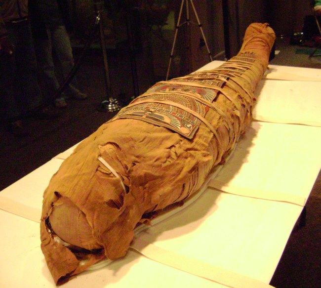 "Mummy from ""Lost Egypt: Ancient Secrets, Modern Science"""