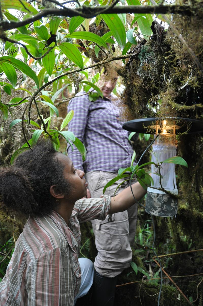 Mari watches as Samoa finishes setting up a light trap to capture mosquitoes.