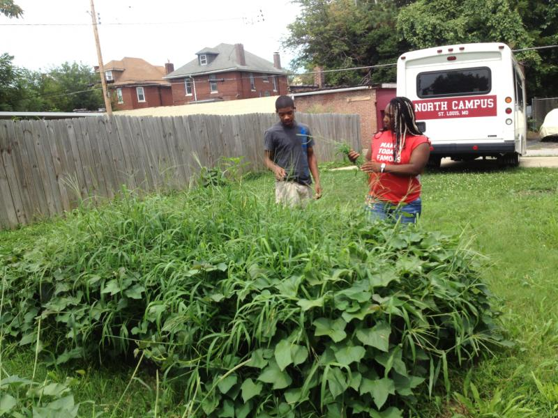 19 year old Charnel Hurn, right, and a fellow coworker, pull weeds from the plant bed. This is Hurn's second summer with the Project.