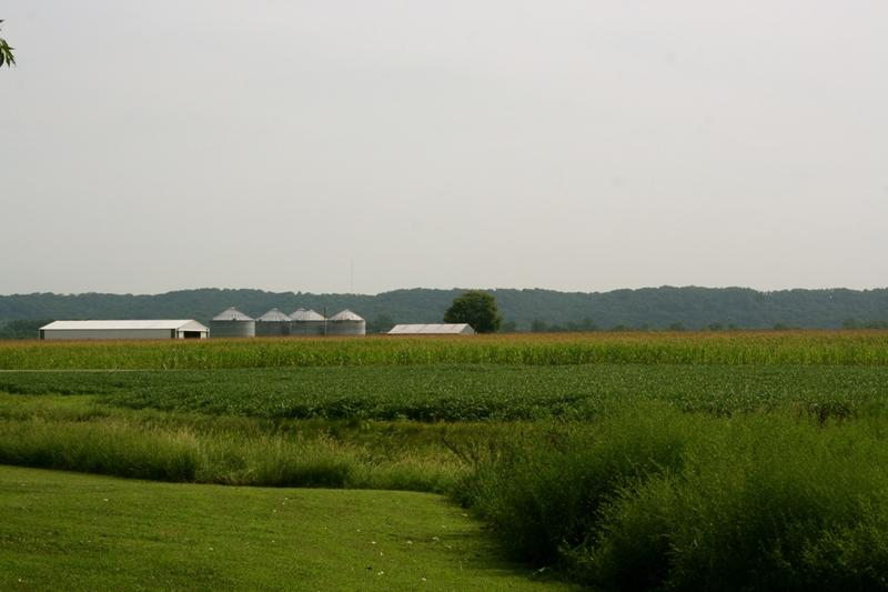 Roundup is used on the majority of fields where soybeans and corn are planted.