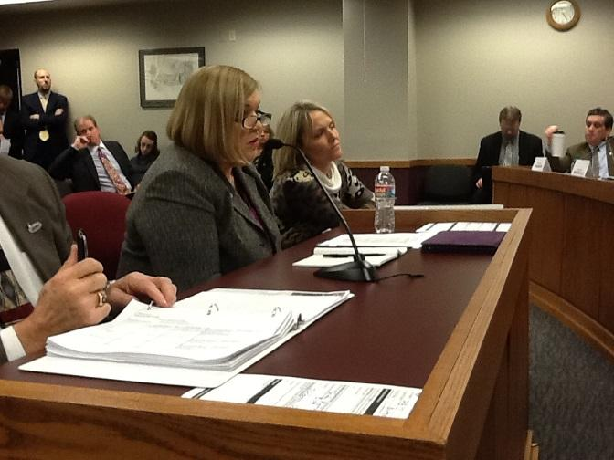 DESE Commissioner Chris Nicastro appears before the Mo. House Budget Committee on Jan. 15, 2014.