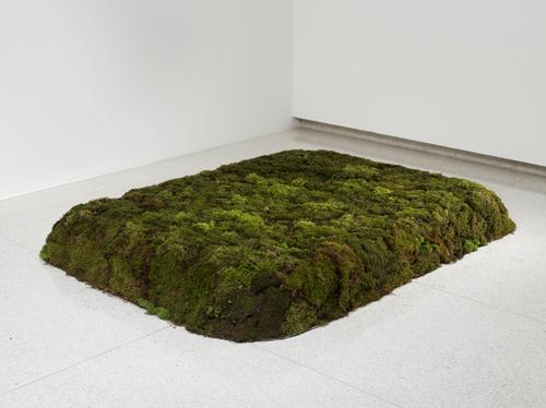 """Moss Bed Queen"" by Meg Webster, part of ""Art of Its Own Making"" exhibit"