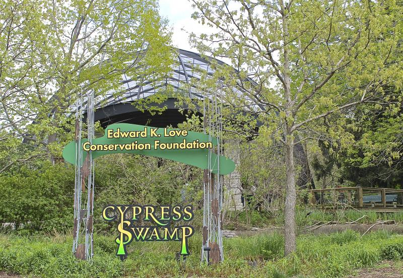 The Cypress Swamp exhibit opened in the Flight Cage in 2004.
