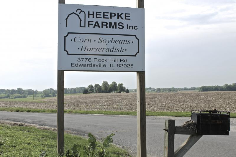 The Heepke Farm produces corn, soybeans, alfalfa and horseradish on nearly 4,000 acres