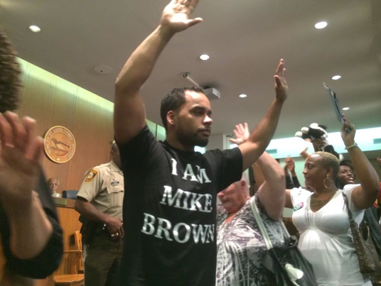 Protests and chants came into the St. Louis County Council chambers Tuesday night.
