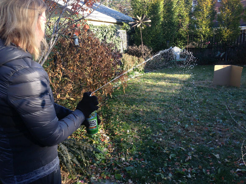 Lori Fowler finds the wasp spray falls short of its claim to shoot 27 feet.