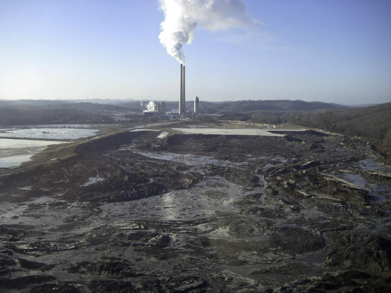 In Dec. 2008, the failure of a dike at TVA's coal-fired power plant near Kingston, Tenn., released 1.1 billion gallons of coal ash into the Emory and Clinch rivers and buried about 300 acres of land.