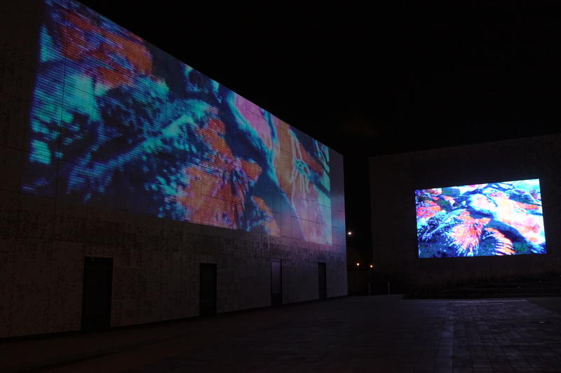 Mitch Hill's video during Public Media Commons Artists Showcase test