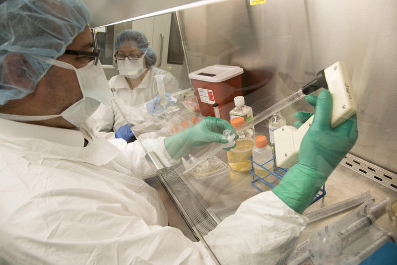 Researchers test samples in an immunotherapy lab at Barnes Jewish Hospital.
