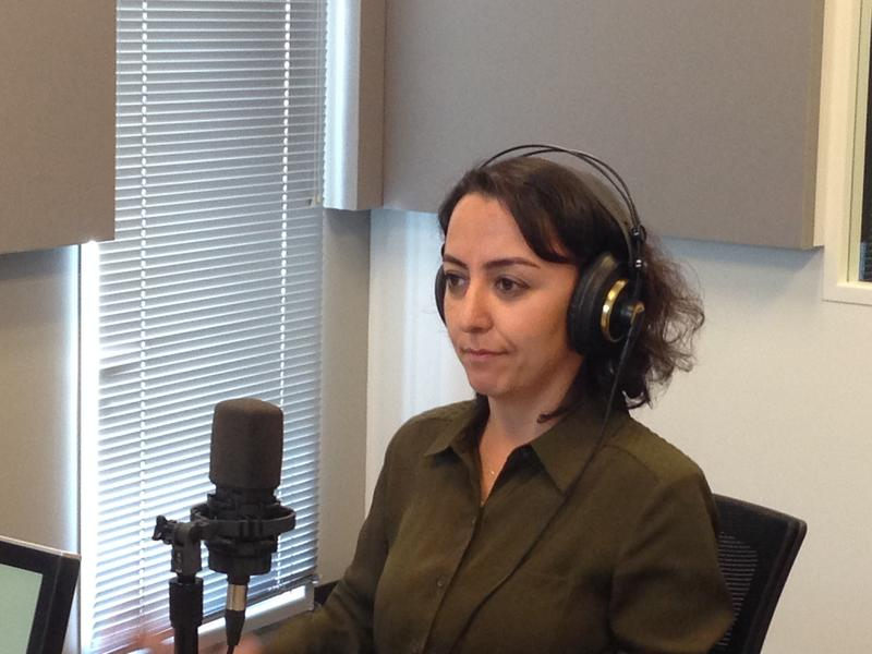 Sevgi Akarcesme discusses Turkey's government and issues of press freedom with 'St. Louis on the Air' host Don Marsh on Jan. 20, 2015, at St. Louis Public Radio in St. Louis.