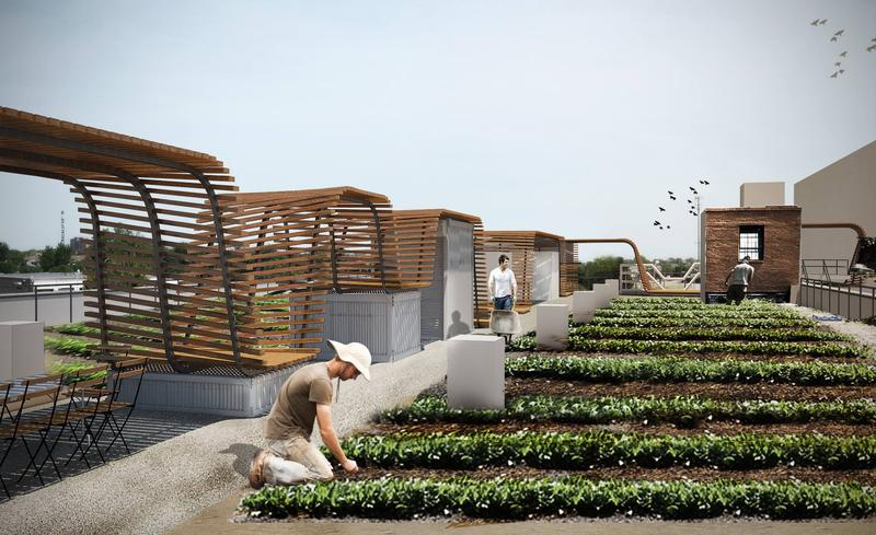 Urban Harvest STL's new farm will cover 10,000 sq. ft. on the roof of a two-story building in downtown St. Louis.