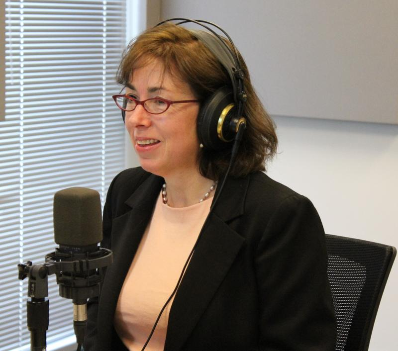 Cornell University political science professor and author Suzanne Mettler talks to 'St. Louis on the Air' host Don Marsh on March 16, 2015, at St. Louis Public Radio in St. Louis.