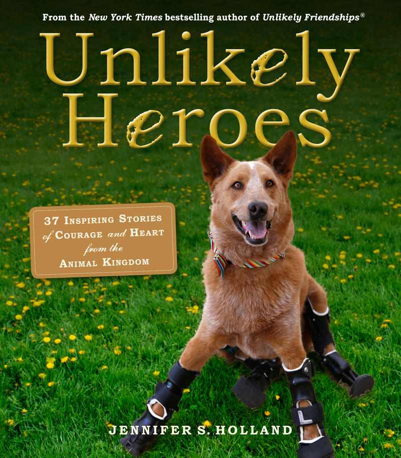 'Unlikely Heroes: 37 Inspiring Stories of Courage and Heart from the Animal Kingdom' by Jennifer Holland
