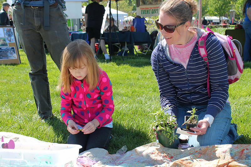 Five-year-old Charlotte Pappan selects foam leaves for a sun painting at the Earth Day Festival on Sunday, April, 26, 2015. Her mother, Sara Pappan, looks on.