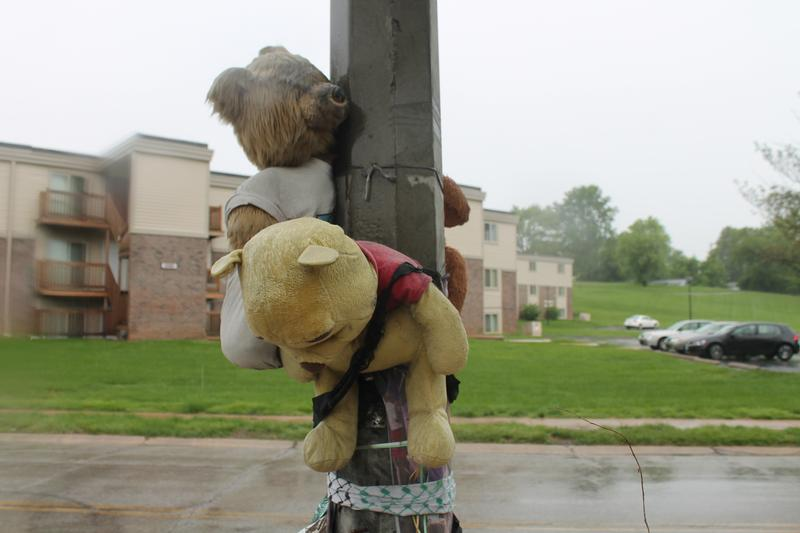 Bears are tied along a lamppost on Canfield Drive on Wednesday.