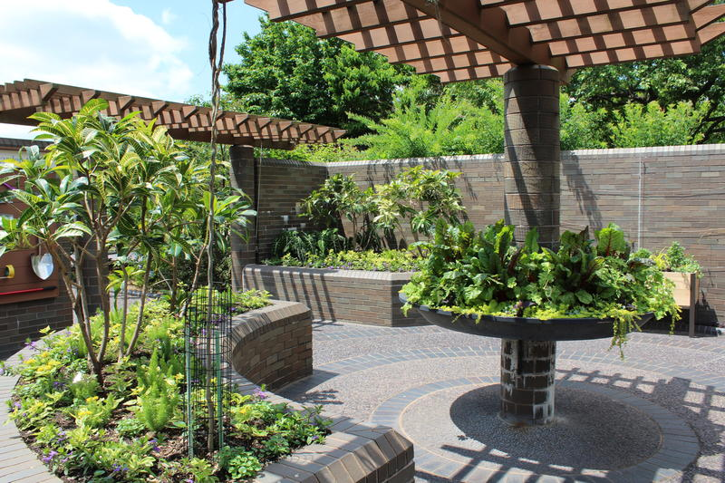 Alternative beds, varying heights and adaptive tools help those with mobility issues to garden, as demonstrated here at the Missouri Botanical Garden.