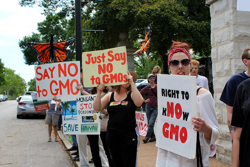 About 70 people protested against Monsanto outside the Missouri Botanical Garden Saturday, May 23, 2015. They want the garden to stop accepting money from the agri-business company.