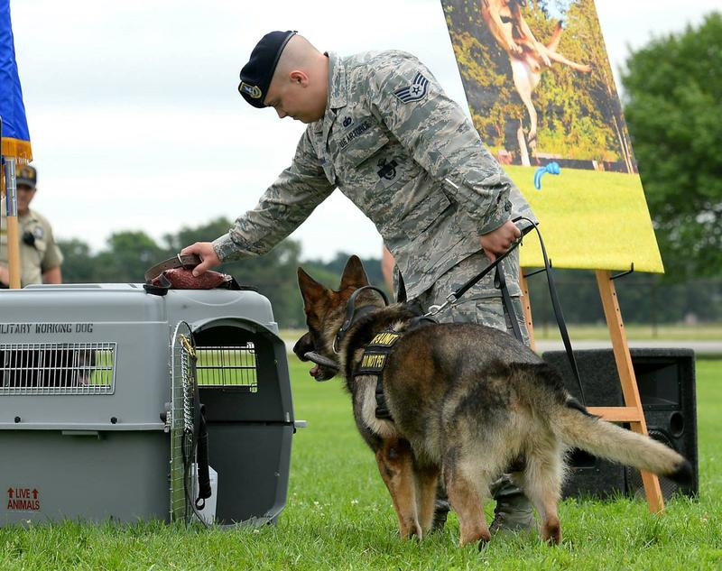 An airman at Scott Air Force Base and his working dog pay their final respects to Breston, a military working dog who was put down in June after contracting a blood infection and being diagnosed with cancer.