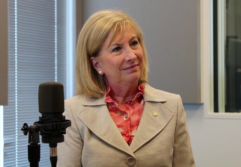 State Rep. Marsha Haefner