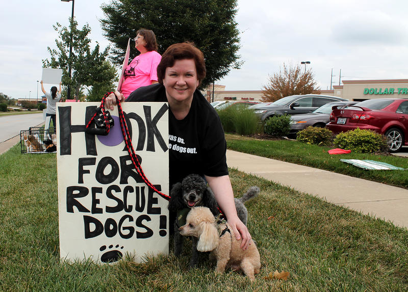 Lorie El Atlassi brought her toy poodle Zach and mini poodle Pepper to protest Petland in Lake St. Louis Sunday, Sept. 27, 2015.  She says her dogs were both rescued from breeders.