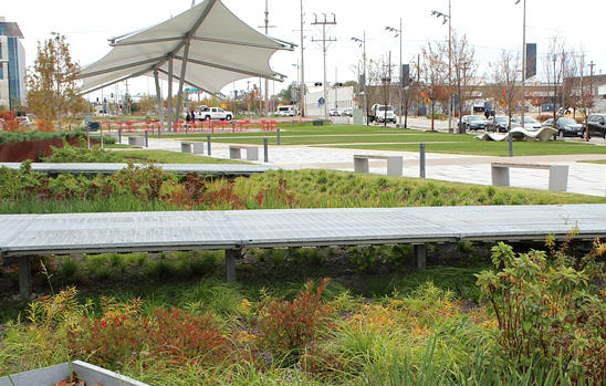 The utilitarian raingardens capture stormwater run-off, removing silt and pollutants. The shade structure adds elegance.
