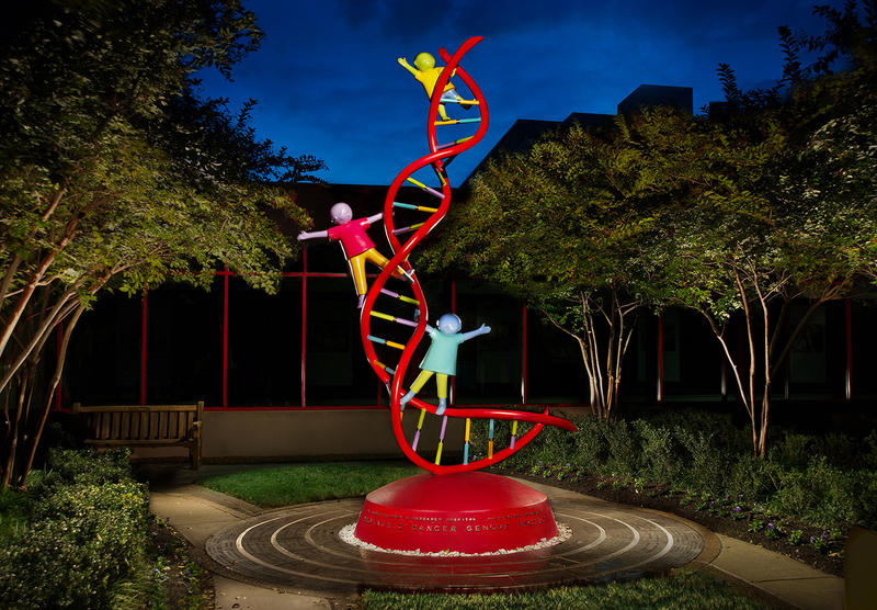 This sculpture outside St. Jude Children's Research Hospital in Memphis was built to honor the Pediatric Cancer Genome Project, a collaboration between St. Jude and Washington University in St. Louis.