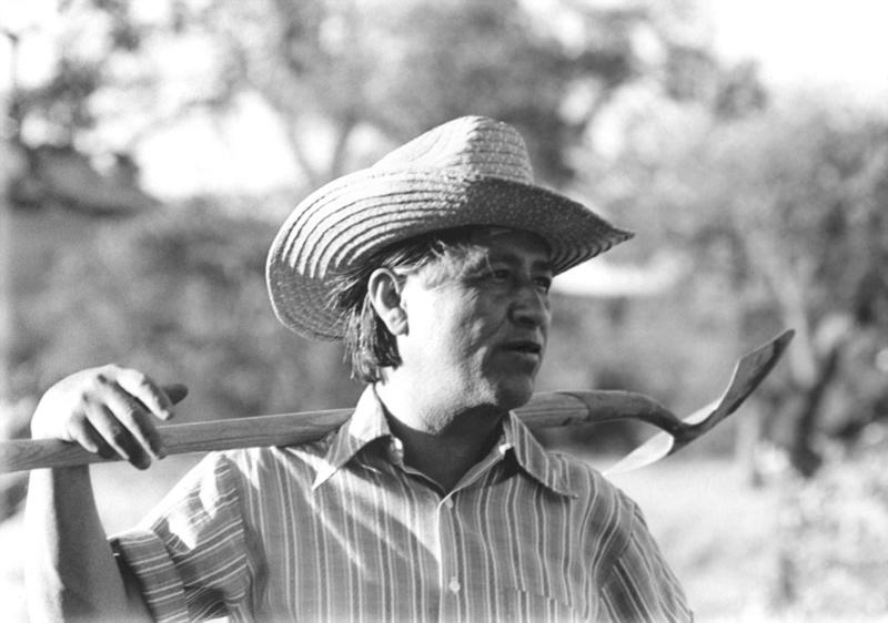 César Chávez at work in the community garden at La Paz in Keene, California by Cathy Murphy, 1976. Photo reprinted with permission of the César E. Chávez Foundation and Cathy Murphy.