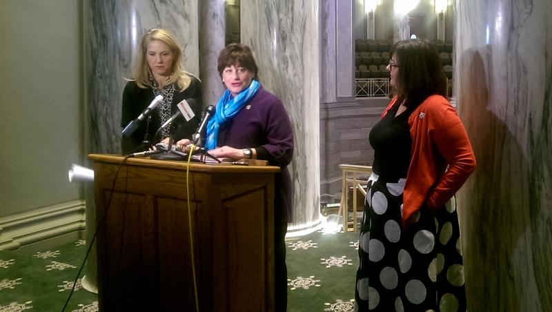 Sen. Jill Schupp, at the podium, introduces The Missouri Earned Family and Medical Leave Program.