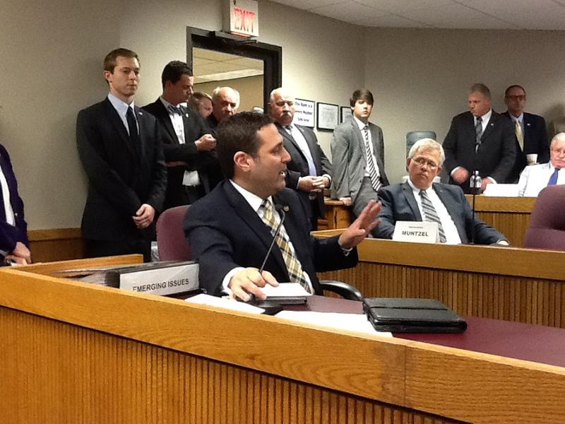 Rep. Mike Colona, D-St. Louis, speaks against SJR 39 during Wednesday's House Emerging Issues committee meeting.