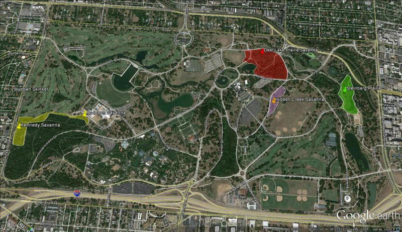 Missouri Botanical Garden research foresees shorter prairies due to