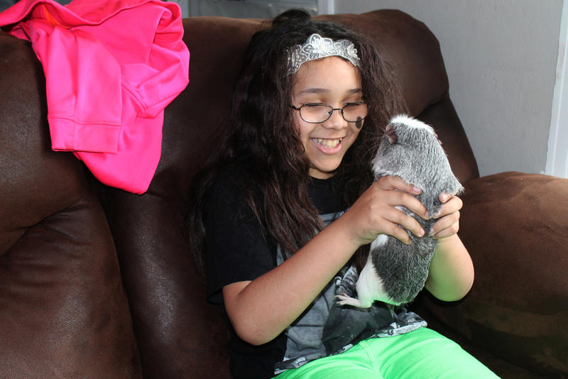 Mazy with her guinea pig named Katy Perry. Mazy has decided her pet is a transgender girl. She also has a dog named Nikko.