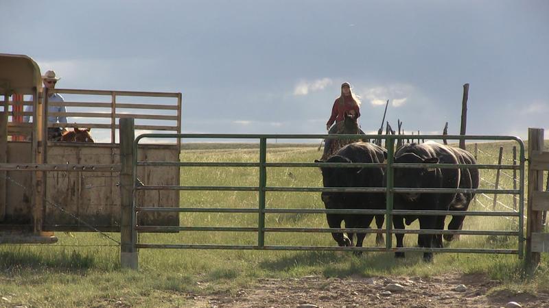 Nanette Boileau, Dakota Territory (still), 2015. HD video, color, sound. Courtesy the artist.