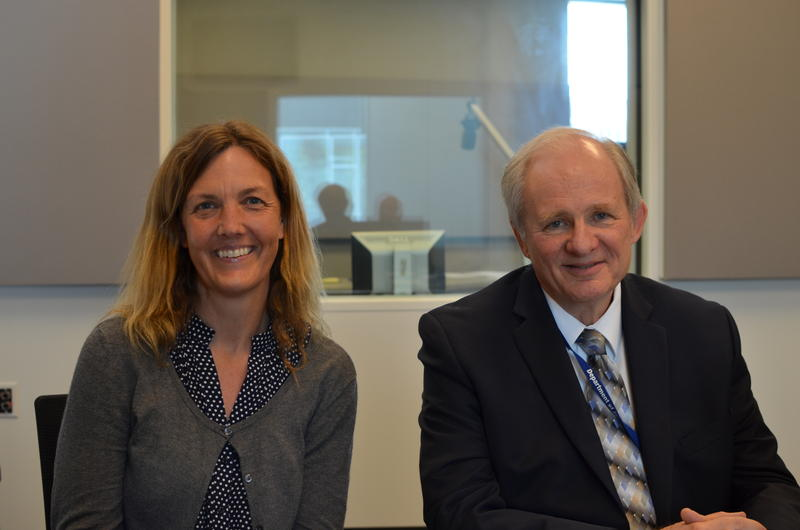 Beth Huebner and Herb Bernsen are in the second year of a MacArthur Foundation grant to reduce the St. Louis County jail population by 15-19 percent.