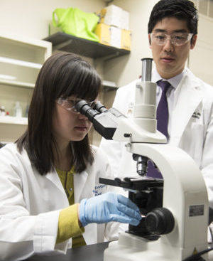 Washington University School of Medicine professor Brian Kim with a member of his lab, Amy Xu