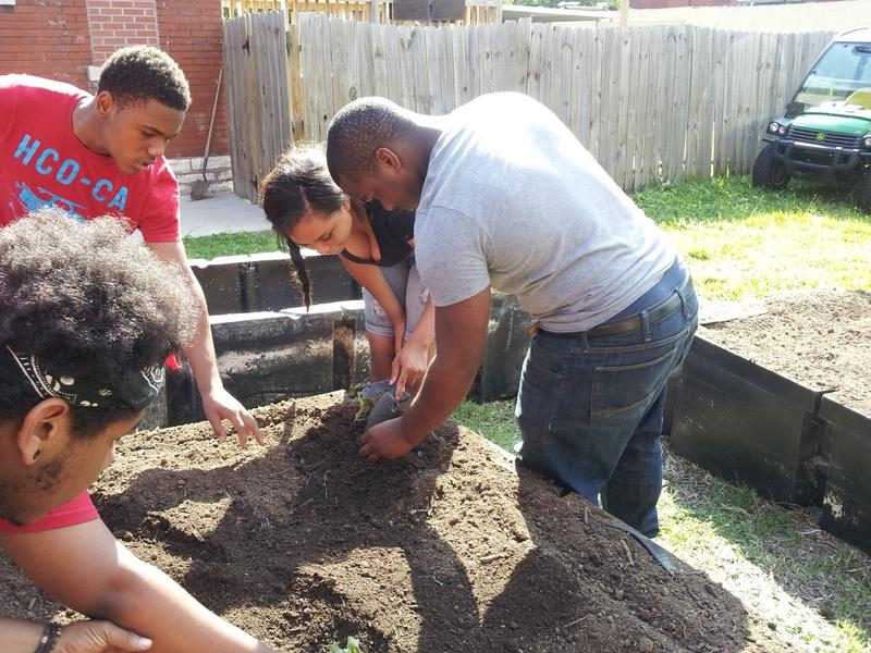 To qualify for the program, the youth had to work at least one hour on June 8, planting sweet potato crops.