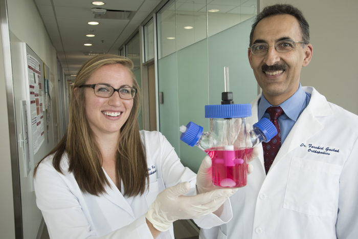 Washington University biomedical engineering PhD student Ali Ross and Farshid Guilak, PhD, a professor of orthopedic surgery, show a container with a prototype of a living hip replacement.