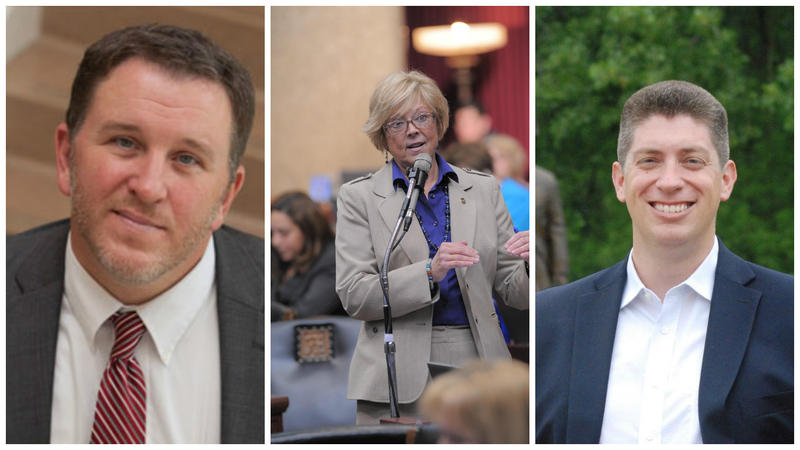 Mike Carter, Anne Zerr and Bill Eigel are running for the St. Charles County-based 23rd District Senate seat.