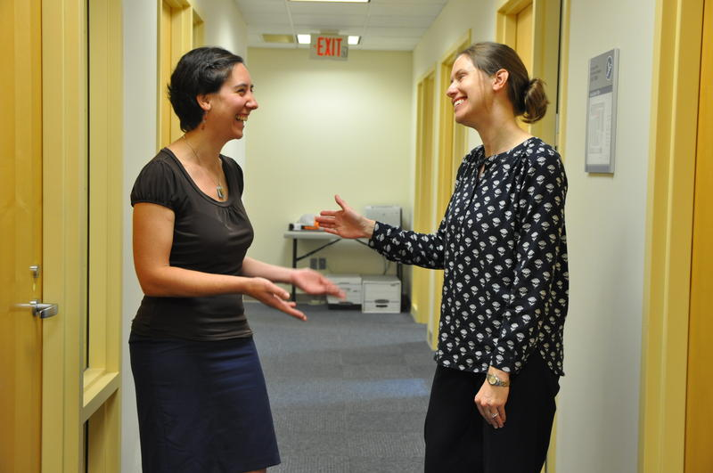 Legal Services of Eastern Missouri attorney Lauren Hamvas, left, chats with project director Amanda Schneider at Family Care Health Centers in the Carondelet neighborhood of St. Louis.