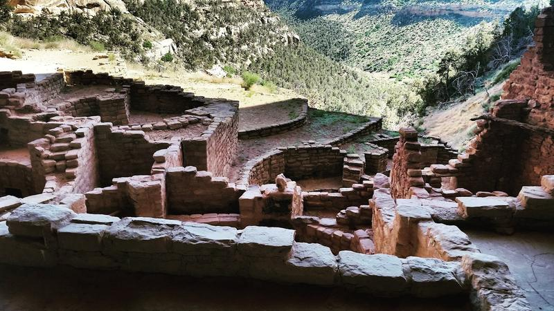 A photo of Mesa Verde National Park in Colorado, courtesy of @TomLeb.