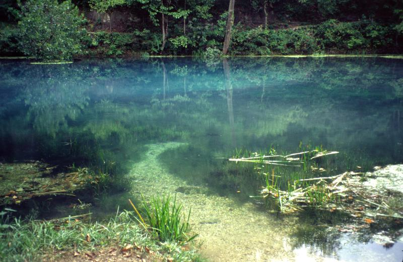 Jo Schaper shared this photo of Alley Spring, Ozark National Scenic Riverways.