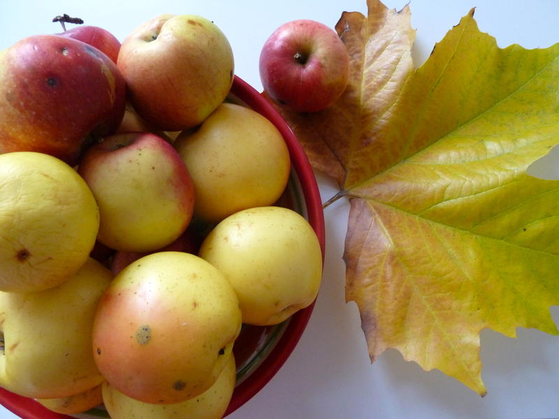 Apples and leaves.