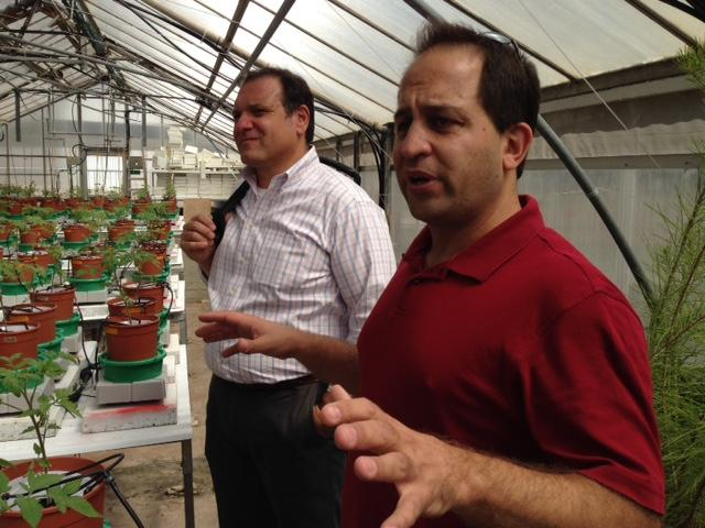 PlantDitech co-founder Menachem Moshelion explains  his phenotyping technology at Hebrew University, where he's a plant physiology professor. Sam Fiorello, COO of the Donald Danforth Plant Science Center and president of BRDG Park, is in the background.