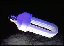 An energy efficient light bulb.