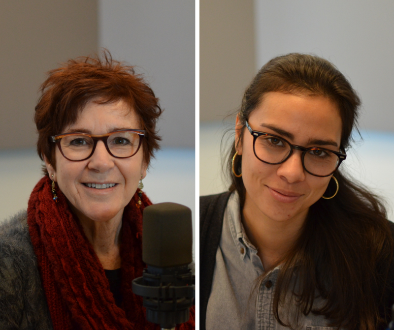 "Nancy Fowler and Jenny Simeone joined ""St. Louis on the Air"" host Don Marsh about stories they reported on this week for St. Louis Public Radio."