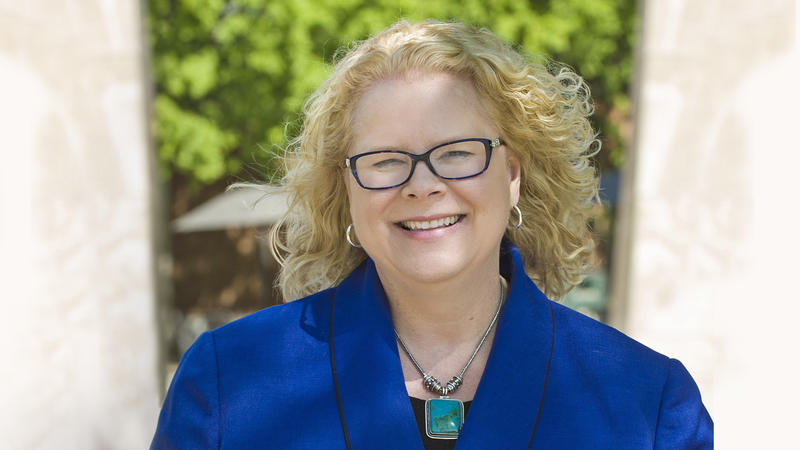 Kristin Sobolik, new provost at the University of Missouri-St. Louis, in photo provided by the campus Jan. 4, 2017