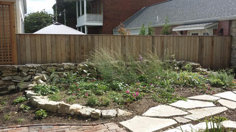 A rain garden at a residential property.
