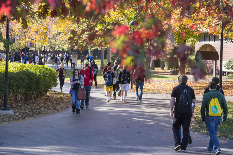 Students walk through Southern Illinois University-Edwardsville's campus.