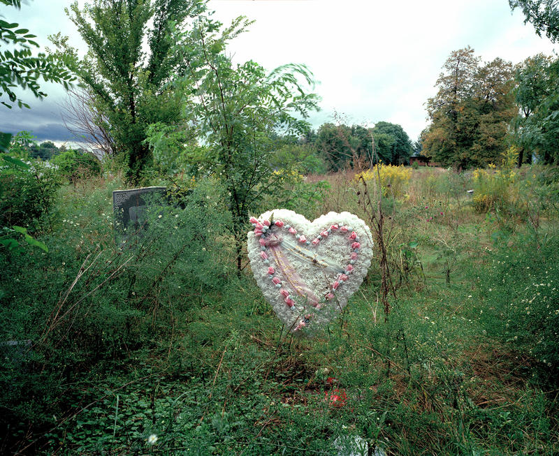 Overgrown greenery almost entirely obscures a gravestone at which a giant white paper mache heart is positioned.
