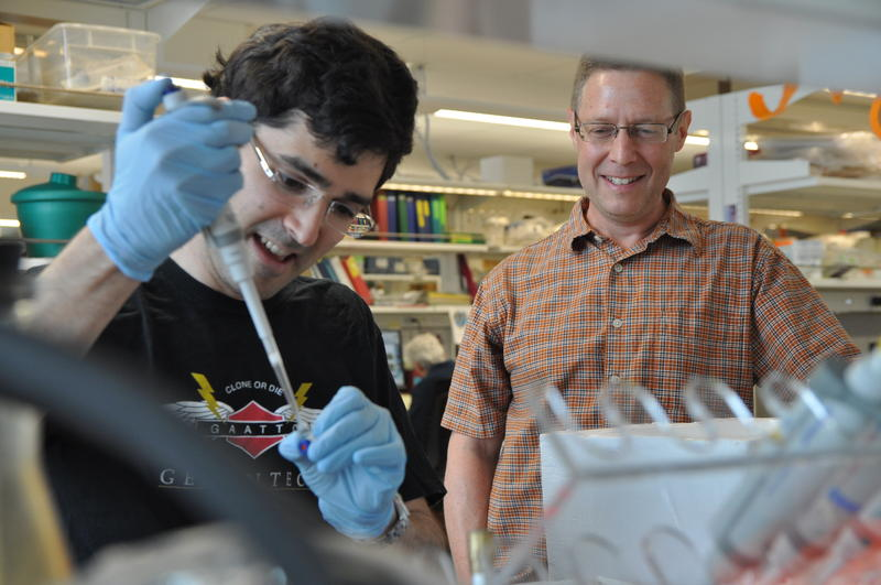 Geneticist Michael White, right, visits with postdoctoral researcher Max Staller as he prepares samples in the lab. White is waiting to hear if the NIH will fund a proposal to start his own lab.