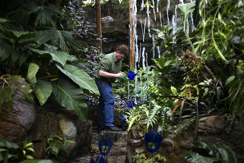 Missouri Botanical Garden | St. Louis Public Radio